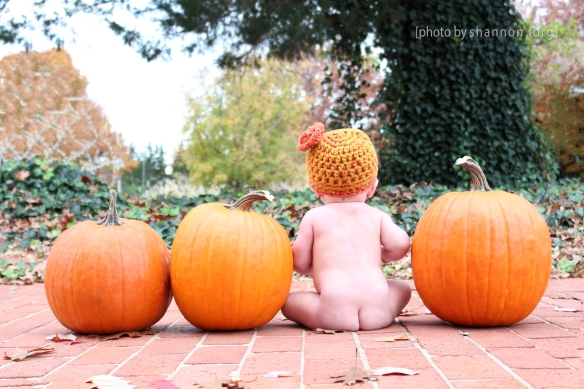 Candy, candy corns, caramel apples & baby bums; nothing sweeter...